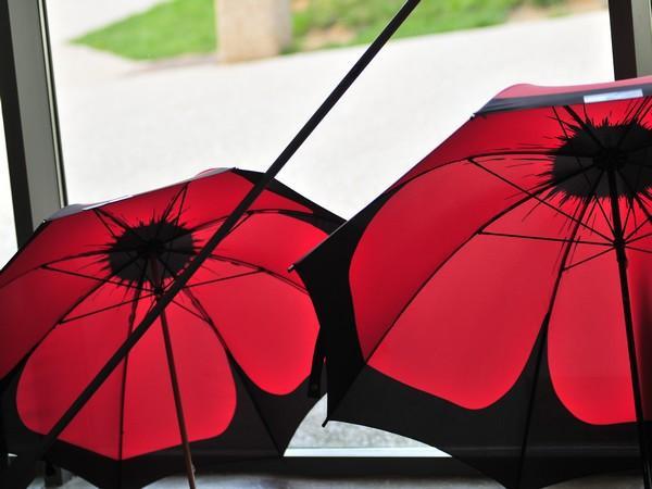 Parapluies poppy