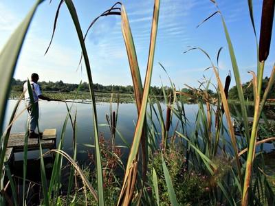 Corbie-étangs de la barette-pêche©ASFlament