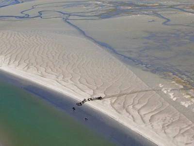 Chevaux sur la plage©SMBDSGLP-Altimage