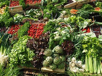 legumes-des-hortillons-crtp-comdesimages.jpg